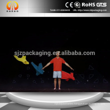3D Holographic Stage Foil / Hologram Display / Holographic Reflection Film